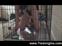 Tied Up Coming in a Cage